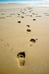 足跡 (footprint)